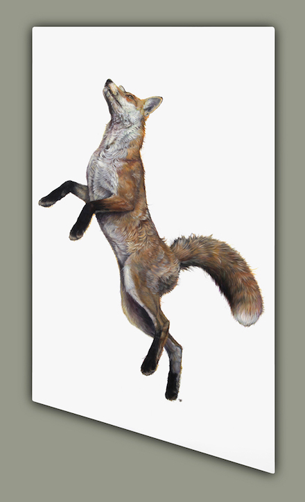 High Rising Fox by Hazel Mountford